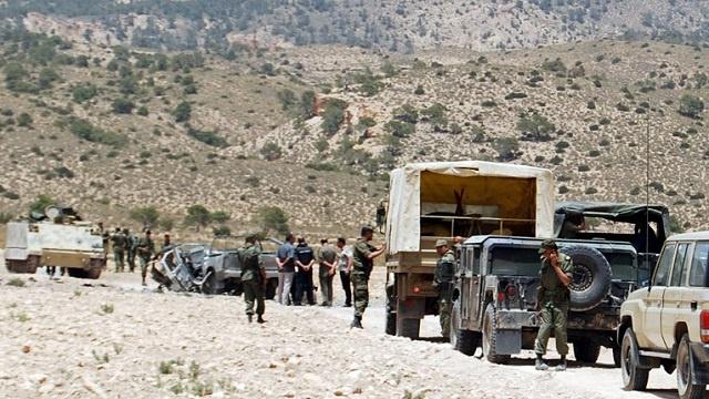 وزارة الدفاع التونسية: من الصعب مراقبة تحرك المسلحين في جبل الشعانبي