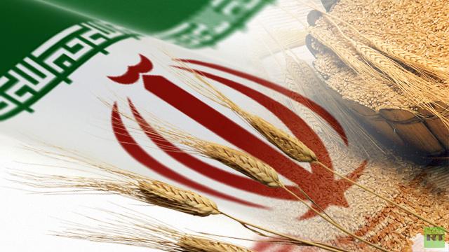 إيران تشتري 400 ألف طن من القمح الروسي والأوروبي