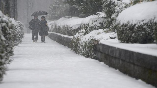 مصرع 13 شخصا في اليابان بأعنف عاصفة ثلجية منذ عقود