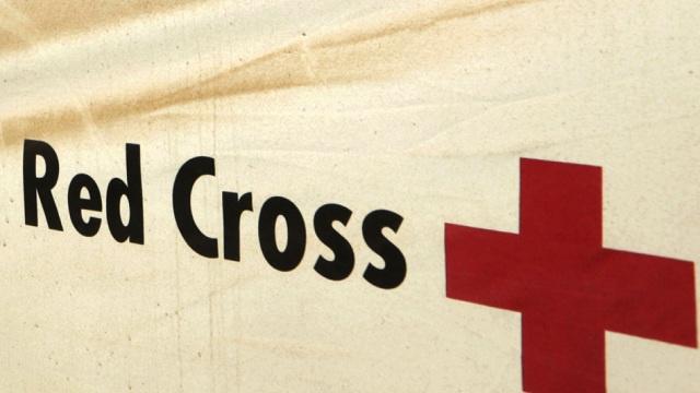 حركة التوحيد والجهاد تعلن مسؤوليتها عن اختطاف 4 أفراد من الصليب الأحمر بمالي