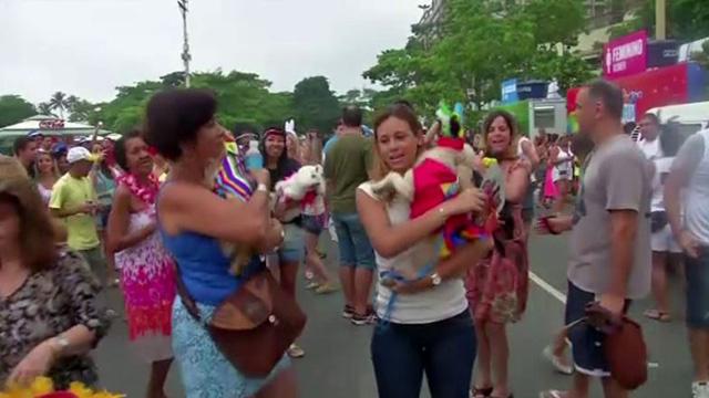 بالفيديو.. شاطئ كوباكابانا في ريو دي جانيرو يشهد فعاليات كرنفال الحيوانات