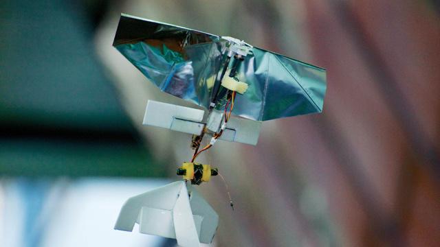 أصغر طائرة بلا طيار في العالم تزن 20 غراما وتشبه يعسوبا