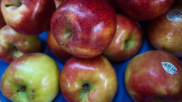التفاح يحتوي على مادة حارقة للدهون