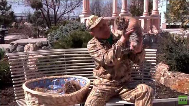 حديقة سفاري في القرم تقيم حفلة بمناسبة الوحدة مع روسيا (فيديو)