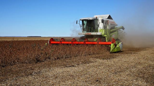 مدفيديف: روسيا ستدافع عن زراعتها في حال خروج أوكرانيا من رابطة الدول المستقلة