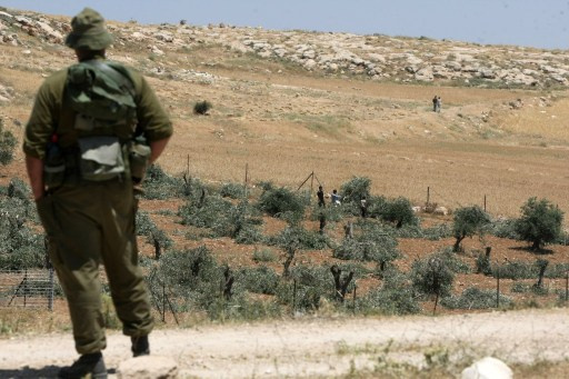 وزير اسرائيلي يطالب بضم مستوطنات الضفة.. واسرائيل تنوي الاستيلاء على مئات الدونمات الزراعية