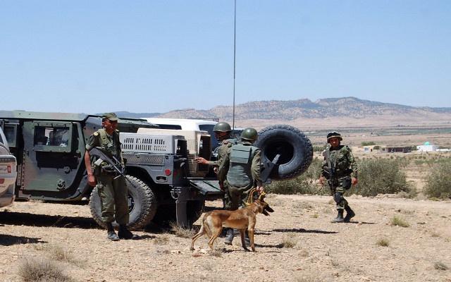 السلطات التونسية تعتقل 9 متشددين وتلاحق آخرين بالقرب من الحدود الجزائرية