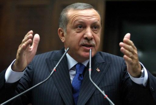 أردوغان يرفض انتقادات الرئيس الألماني حول انتهاكات الحقوق في تركيا