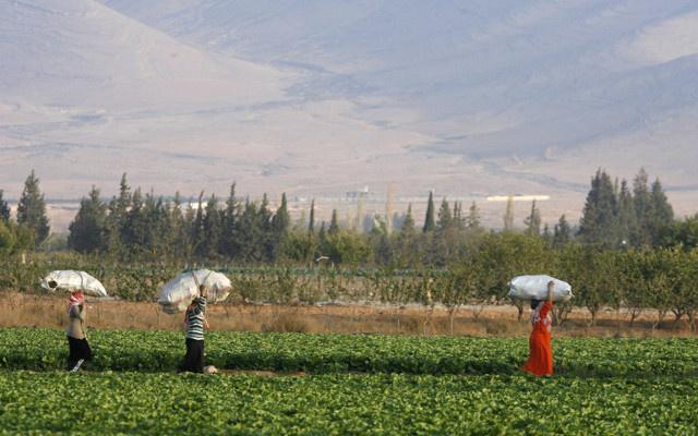 السلطات الأردنية تمنع دخول سوريين يحملون جوازات سفر مزورة