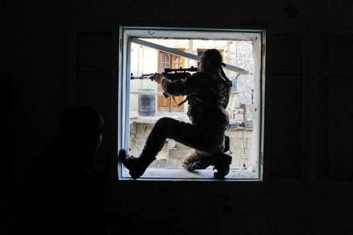 النمسا تعتزم نزع الجنسية عن كل من شارك في قتال مسلح خارج البلاد