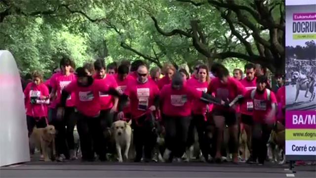 بالفيديو.. الكلاب تهوى الرياضة أيضا