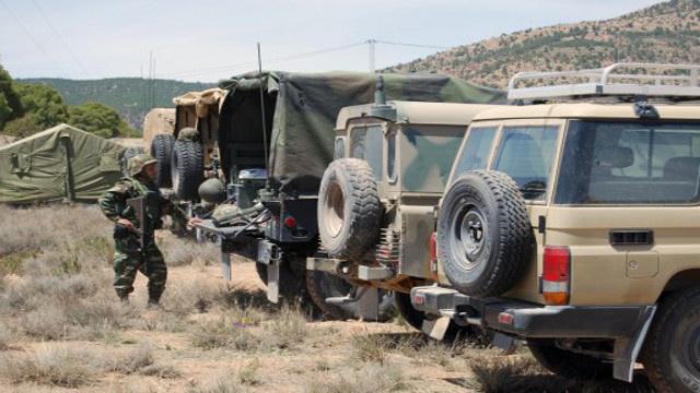 اتفاقية تعاون عسكري في مكافحة الإرهاب بين تونس والجزائر