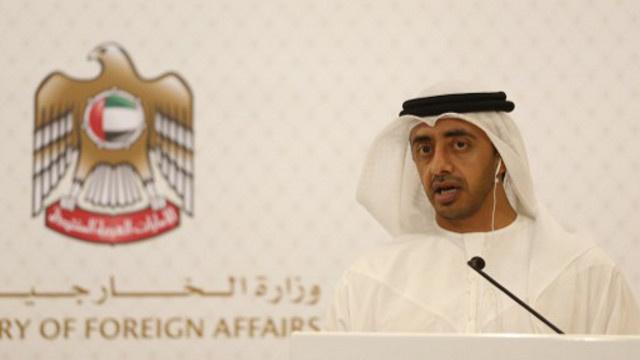وزير الخارجية الإماراتي: سنواصل دعم مصر ماليا بعد فوز السيسي
