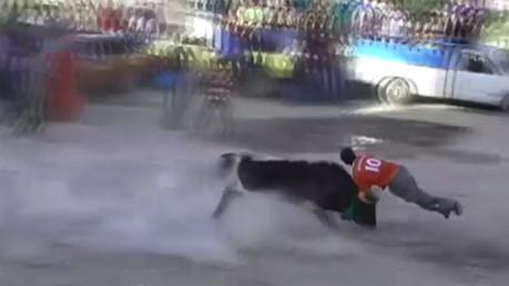 بالفيديو.. ثور يجرح 10 أشخاص بعد فراره من ساحة المصارعة