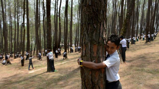 النيباليون يحتضنون الأشجار