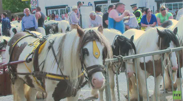 بالفيديو.. مهرجان تجاري للخيول في مدينة أبلبي الإنكليزية