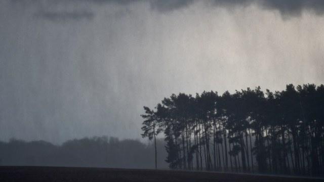 مقتل 5 جراء عاصفة قوية شمالي ألمانيا