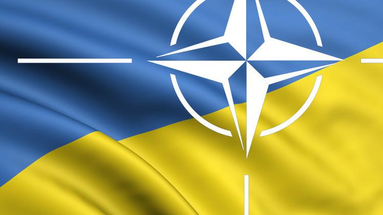 روغوزين: الناتو يطفئ ألسنة الحروب الأهلية بالكيروسين