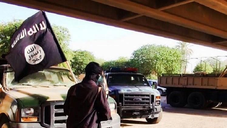 الداخلية المغربية: أكثر من 2000 مغربي يقاتلون في صفوف