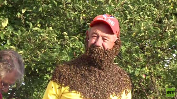 بالفيديو... ما هي أفضل لحية من النحل ؟