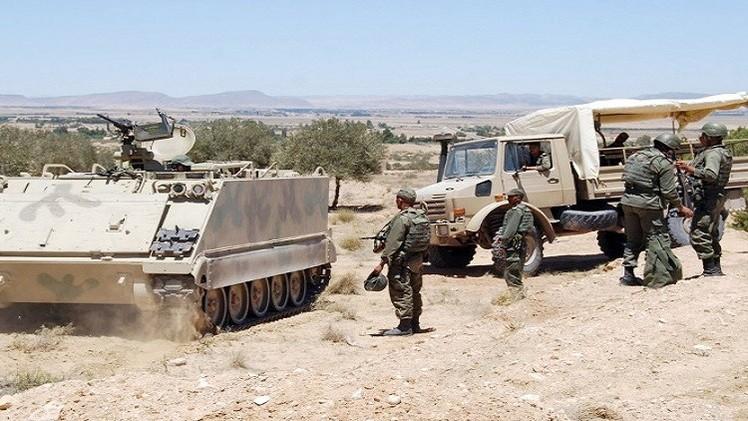 الجيش التونسي يستهدف مسلحين في غارات جوية على جبل سمامة