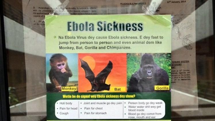 الرئيس النيجيري يدعو سكان بلاده إلى عدم التجمهر لمنع انتشار إيبولا