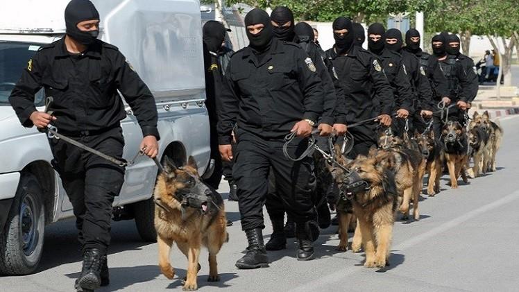 تونس.. تفكيك خلية بسيدي بوزيد متخصصة بنقل الأسلحة إلى الجبال