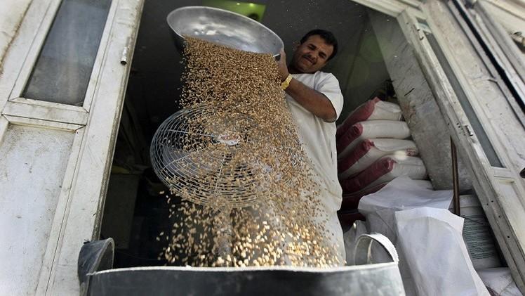 السعودية تعلن شراء 610 آلاف طن من القمح الصلد