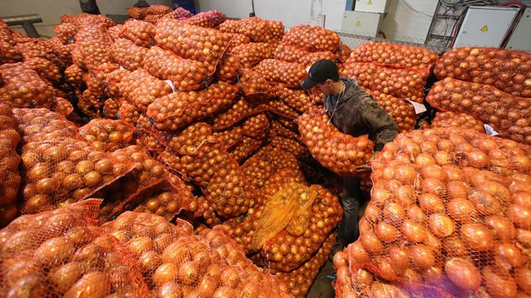 حظر المنتجات الزراعية الأوكرانية في روسيا يدخل حيز التنفيذ