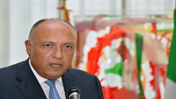 الأزمة الليبية محور زيارة وزير الخارجية المصري إلى الجزائر