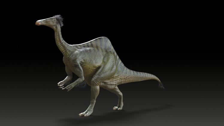 علماء المتحجرات يعيدون صورة ديناصور احدب