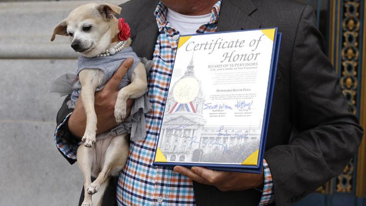 كلب يصبح عمدة لسان فرانسيسكو ليوم واحد