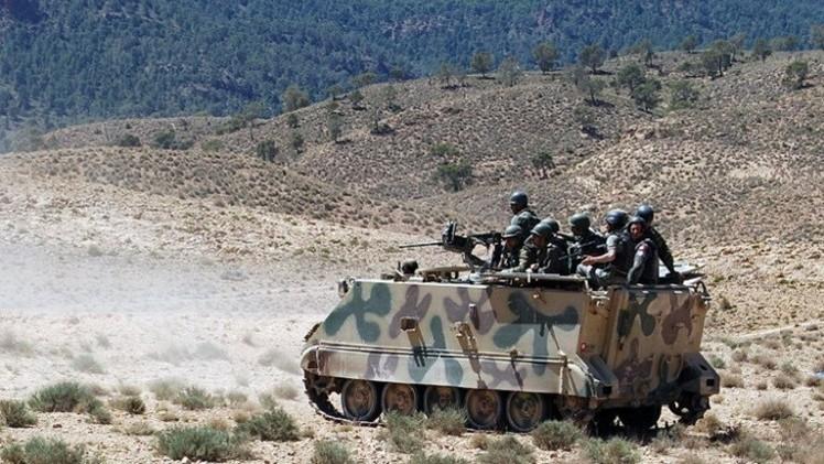 الجيش التونسي يعثر على جثث 3 مسلحين بالشعانبي