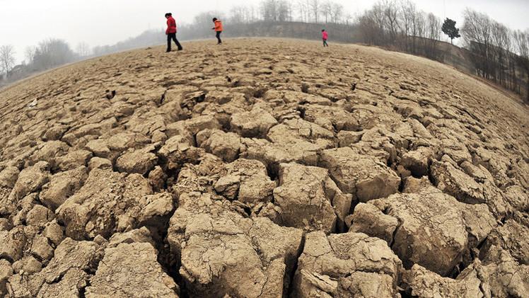 دراسة: زيادة انتاج المحاصيل الزراعية أدى لارتفاع درجات الحرارة عالميا
