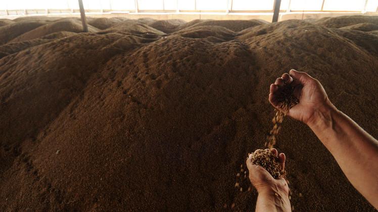 روسيا تفرض رسوما على صادرات القمح