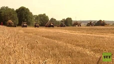 روسيا تجدد دعمها للقطاع الزراعي