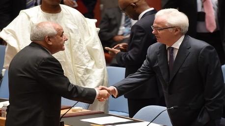 تشوركين ومنصور في الأمم المتحدة