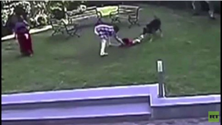 رضيعة تتعرض لاعتداء كلب في حديقة عامة (فيديو)