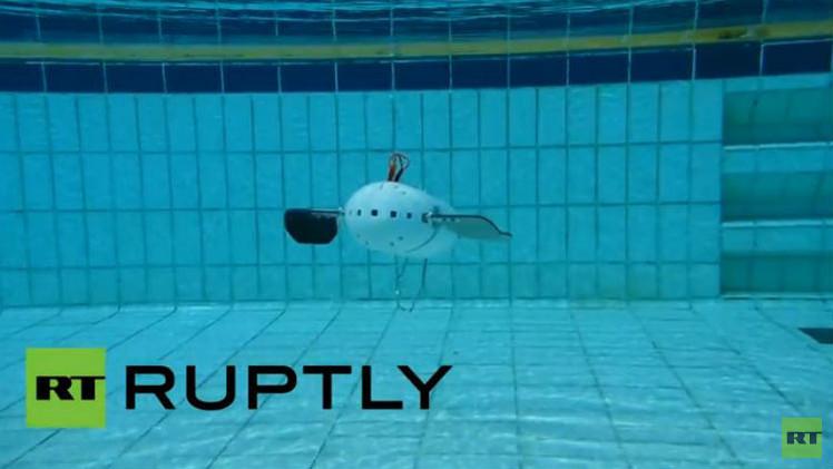 بالفيديو... روبوت آلي مطور يكشف عن خبايا المحيطات