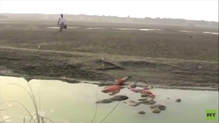 بقايا جثث نهر غانج تعود لموتى عجز أهاليهم عن حرقها