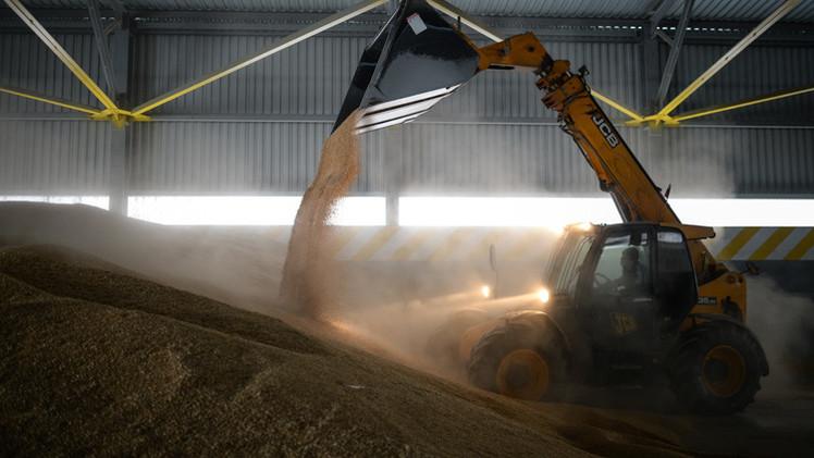 ارتفاع محصول الحبوب الروسي بنسبة 12% عام 2014
