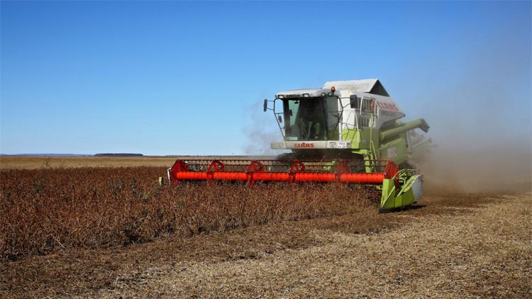 مدفيديف يقترح دعم سعر الفائدة للقروض الزراعية