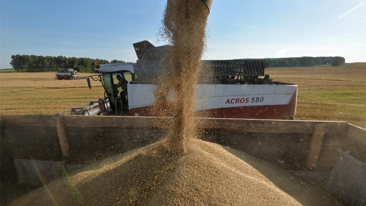 روسيا صدرت 1.7 مليون طن من الحبوب الشهر الماضي