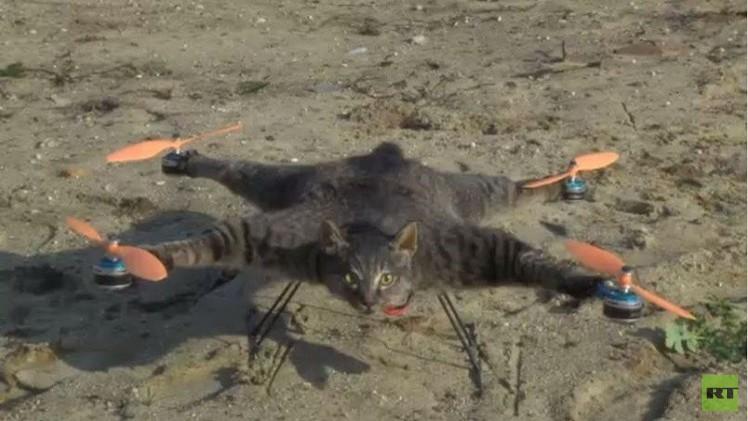 بالفيديو.. حيوانات تتحول إلى آليات تكنولوجية