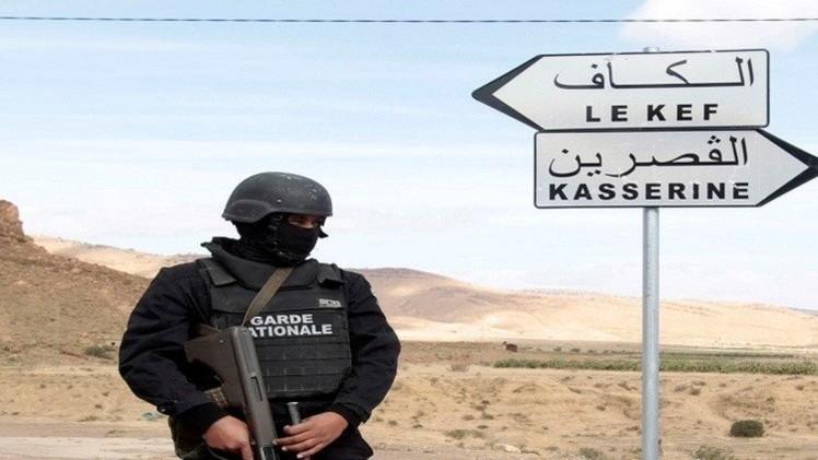 تونس: نحو 100 إرهابي تونسي وأجنبي يتحصنون في الجبال