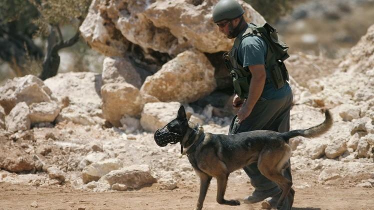 بعد انتشار فيديو .. إسرائيل تحقق في إطلاق جنودها الكلاب على فلسطيني