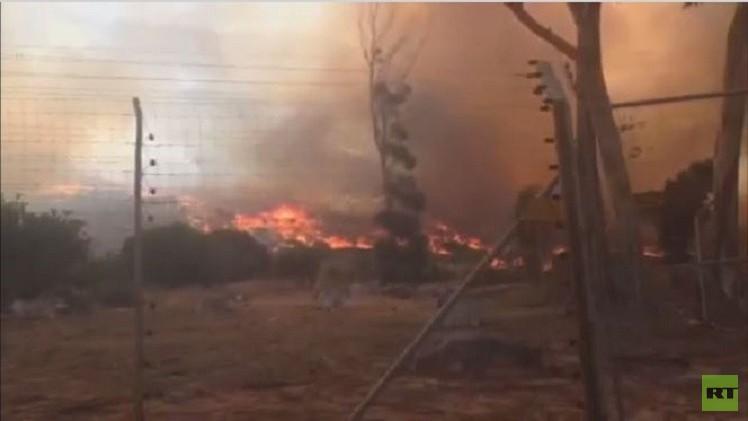 بالفيديو.. حرائق الغابات تستمر حول كيب تاون