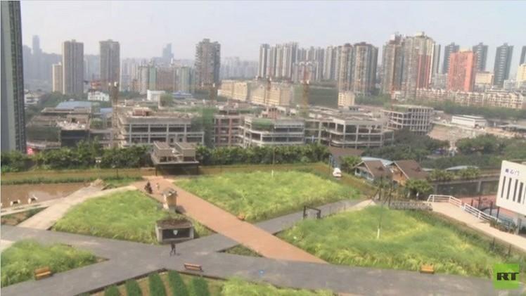 مزارع فوق السطوح لحل مشاكل الزراعة في الصين (فيديو)
