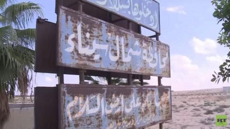 مقتل 29 مسلحا شمال سيناء خلال 4 أيام