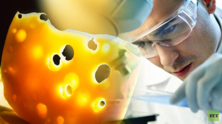 العلماء يفسرون فجوات الأجبان السويسرية